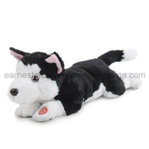 China Naughty Funny Plush Dog (QC1398) - China Funny Dog