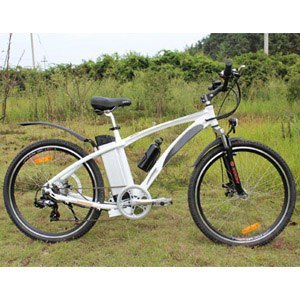 High Quality Electric Bike with Middle Driven Motor
