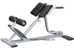 Back Extension Bench, Back Extension, Roman Chair, Hyper Back Extension, 45 Degree Back Extension