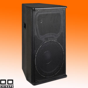 15inch Stage Sound Professinal Speaker (Dm152) pictures & photos