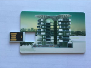 Personalized 4GB 8 GB Flat and Plastic Credit Card USB Flash Drive Memory Stick pictures & photos