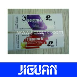 Holographic Testosterone Enanthate 250mg/10 Ml Labels pictures & photos
