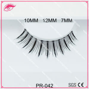 False Human Hair Lashes and Eyelash Packaging pictures & photos