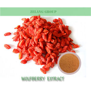 Factory Supply Goji Berry Extract Lbp 1: 1 Wolfberry Extract
