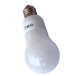 Incandescent Energy Saving Lamps (WH INCD-01)