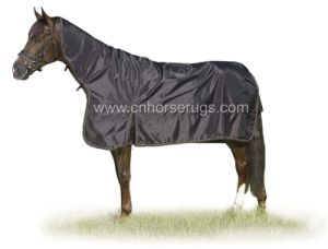 Horse Rug pictures & photos
