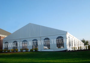 Party Tent (TGEO2029)