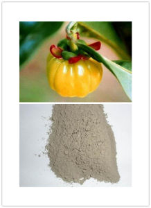 High Quality Garcinia Cambogia Extract pictures & photos