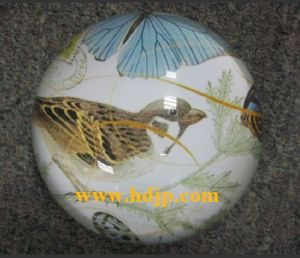 Crystal Paperweight (HDCP2024)
