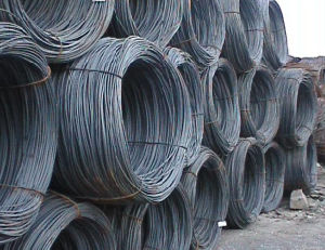 Steel Wire Rod pictures & photos