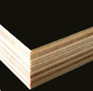 Hot-Sale Film Faced Plywood with 18mm Thick