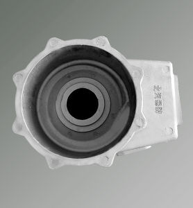 OEM/ODM Aluminum Alsi9mg Gravity Casting Housing pictures & photos