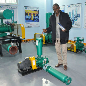 Industrial Oil Free Roots Blower for Sewage