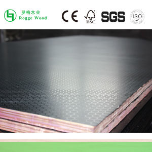 Wire Mesh Film Faced Plywood