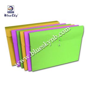 Paper File Case (BLY8 - 1003 PF)