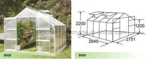 Hobby Greenhouse for Plants and Flowers (B909) pictures & photos