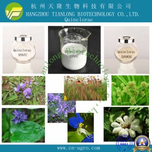 Good Quality Herbicide Quinchlorac (95%, 97%TC, 25%SL, 50%WP, 50%WDG) pictures & photos