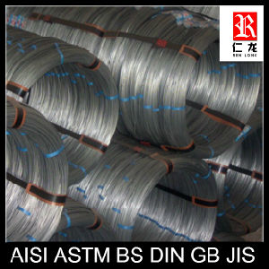 Hot Sale Galvanized Steel Wire Made in China (SGS ISO9001)