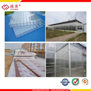 Guangzhou -Clear Twin Wall Polycarbonate Hollow Sheet (YM-PC-263) pictures & photos