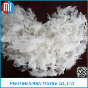 2 4cm/4 6cm White Washed Duck Goose Feathers For Furniture Filling
