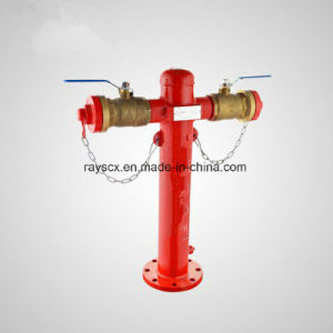 Sng Different Spec Foam Fire Hydrant pictures & photos