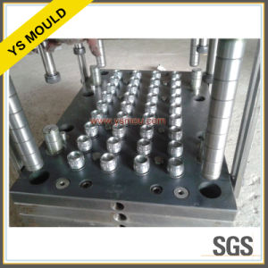 Promotion Hot Sale Plastic Injection Cap Mould Mold (YS831) pictures & photos