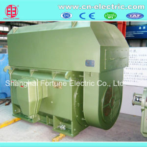 Big Size Asynchronous AC Induction Motor pictures & photos