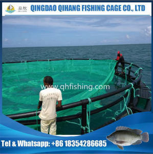 Aquaculture HDPE Fish Cage, Fish Farming Net Cage pictures & photos