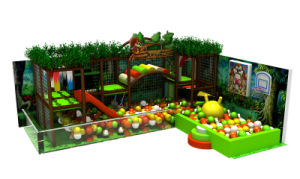 Fascinating and Design Indoor Playground