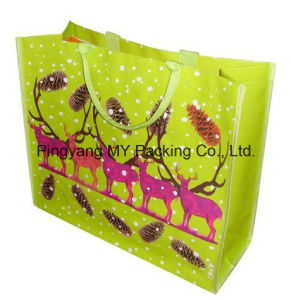 Eco Environmental Easy Shopping PP Woven Promotion Bag pictures & photos