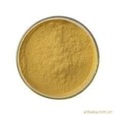 Natural Pumpkin Seed Powder Extract with Phytosterols 5%-30% pictures & photos