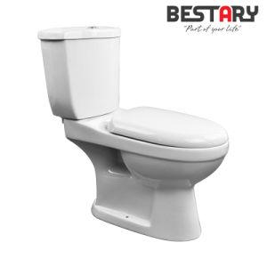 Washdown Toilet