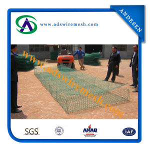 60X80mm PVC Gabion Box&Gabion Baskets&Gabions pictures & photos