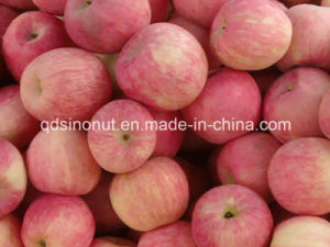Fresh FUJI Apple pictures & photos