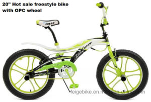 "2015 New Model 20""*3.0 Mug Wheel Freestyle Bike (FP-FSB-H031)"