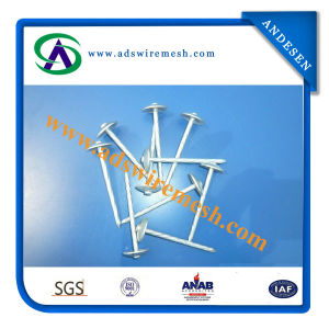 High Quality Galvanized Umbrella Head Roofing Nail (ADS-RN-03) pictures & photos