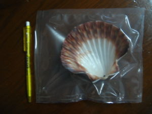 Plastic Transparent Packaging Pouch Bag, Seafood Packaging pictures & photos