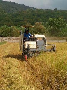 Wheat Harvester Price, 2019 Wheat Harvester Price Manufacturers
