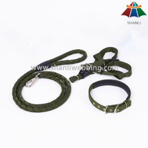 Hot-Sale High-Quality Solid Color Army Style 20mm Polyester/Nylon Leash & Adjustable Collar & Harness pictures & photos