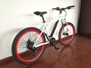 Hot Sale Torque Sensor Electric Bicycle Bike pictures & photos
