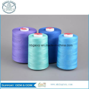 Bag Closing Sewing Thread pictures & photos