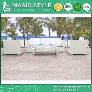 Rattan Sofa Combination Sofa Set Outdoor Furniture Sofa Set Patio Sofa Garden Sofa Leisure Sofa pictures & photos