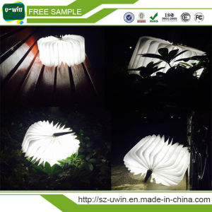 Book Shap Shaped LED Night Light