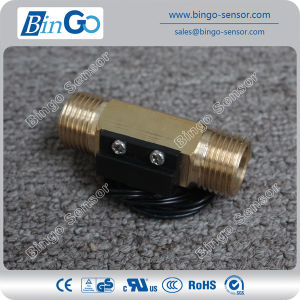 Piston Type Water Flow Switch Fs-M-Psb02-Gd pictures & photos