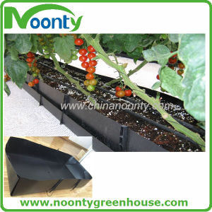 PP Hydroponics Growing Trough System for Strawberry, Cucumber, Watermelon, Eggplant, Pepper, Tomato with Commercial Farm Tunnel and Multi-Span Greenhouse