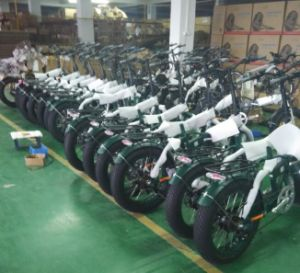 20 Inch Folding Electric Fat Bike pictures & photos