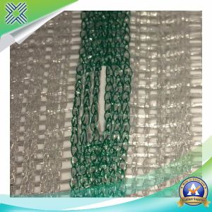 Agricultural HDPE Anti-Bee Nets pictures & photos