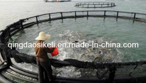 Tuna Farming Floating Cage (SK-001) pictures & photos