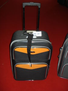 Skd EVA Trolley Case pictures & photos