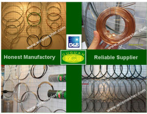 Electro Galvanized Wire (BWG8-33) ISO9001: 2000 Certificated
